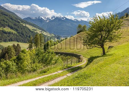 Alpine hiking path in Valle Aurina South Tyrol Italy