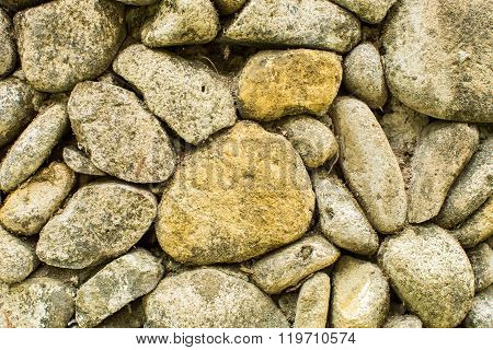 Stone Wall With Greenery. Texture