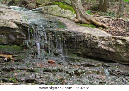 Water On Rocks In Forest