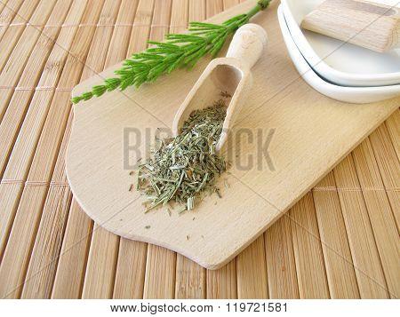Field Horsetail, Equiseti herba
