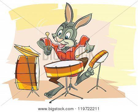 Funny Bunny musician