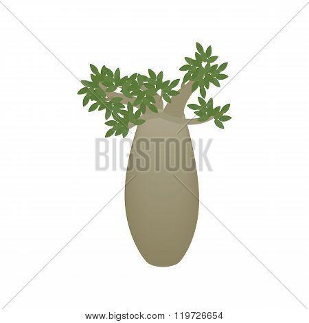 Kingia australis icon, isometric 3d style