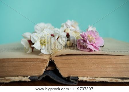 Spring Plum Blossoming With Old Books