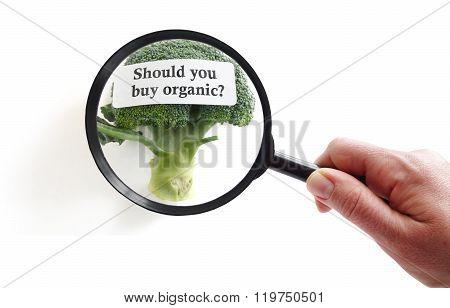Choosing Organic Food