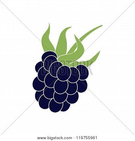 Dewberry Berry Icon