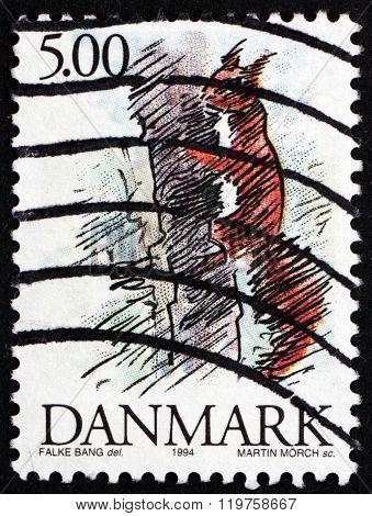 Postage Stamp Denmark 1994 Red Squirrel, Wild Animal