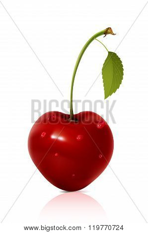 Isolated Cherry With Drops