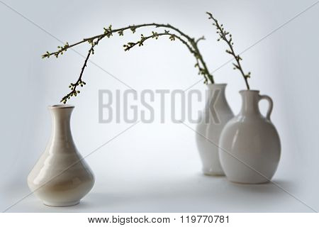 Three White Ceramic Vases With Spring Branches On A Light Ground
