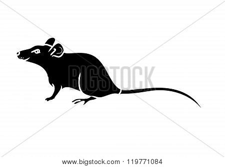 Rat, Mouse - Black Silhouette 0
