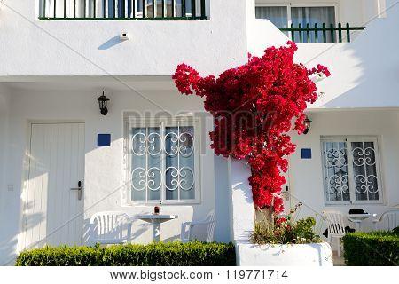 The Building Of Luxury Villa, Mallorca Island, Spain