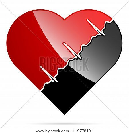 The heart and cardiogram