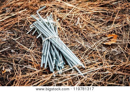 Bunch Of Tent Pegs.