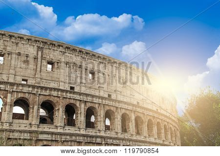 Colosseum View With Trees