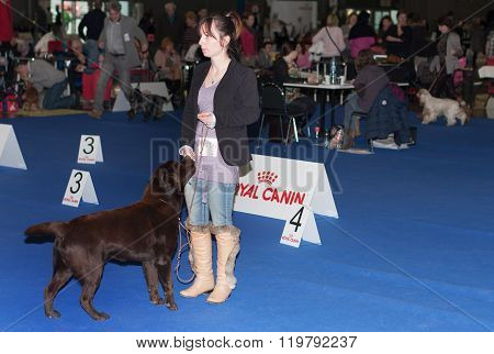 International Dog Show Duo Cacib In Brno