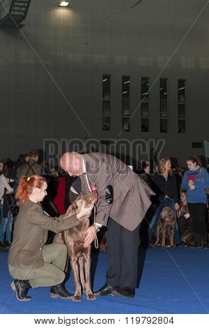 International Dog Show Duo Cacib In Brno