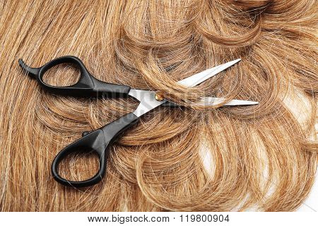 Hairdresser's scissors with brown hair, close up
