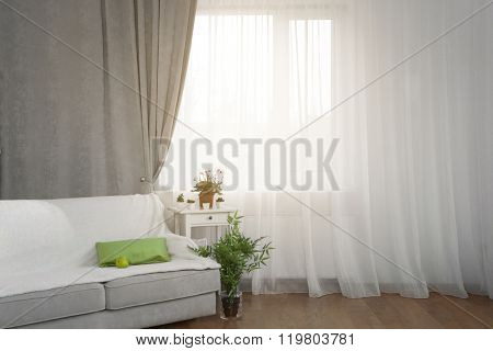 Grey sofa, small table and green plants on curtain background