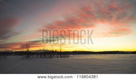 Sunset In Winter Tundra