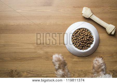Dog Food And Dog Paw On Wood Table