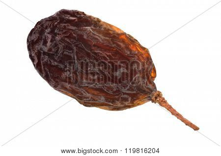 Single raisin fruit isolated with path on white background. Macro image.