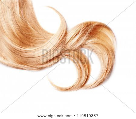 Healthy Blond Hair isolated on white. Curl of Dyed Blonde hair close up