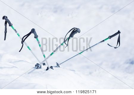 Ski Poles In Snow