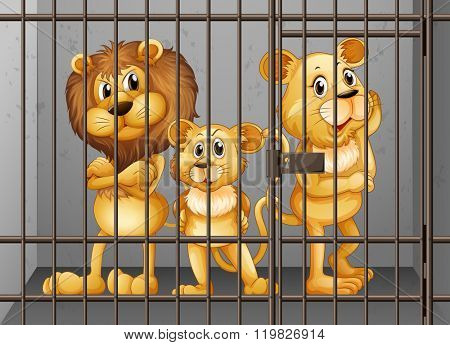 Lions being locked in the cage illustration