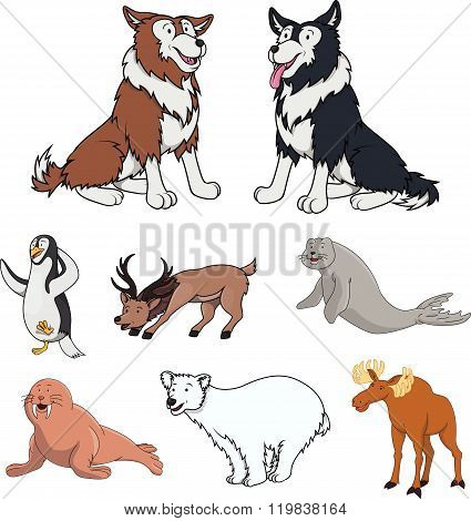 Arctic animal cartoon illustration