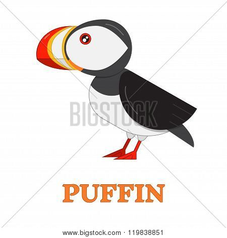 Puffin Sea Bird Icon