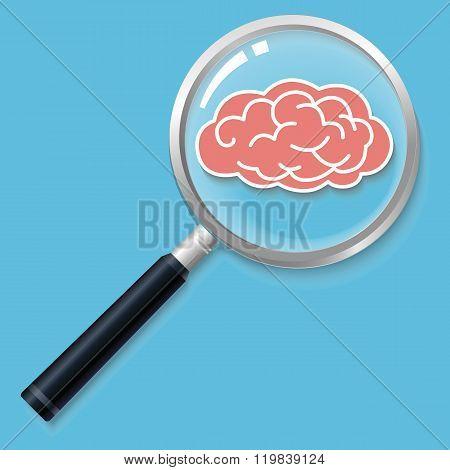 Brain in magnifier
