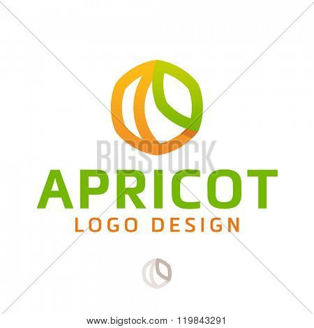 Vector logo design, apricot in line-art style. Logotype template.