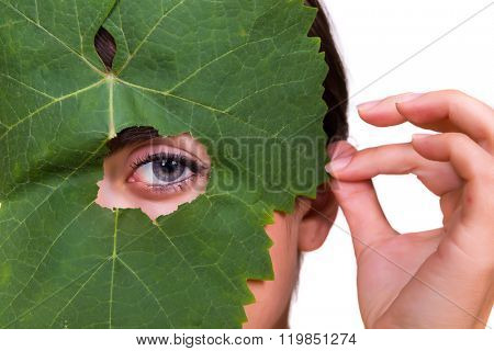 Green tree leaf with a female eye peeping through