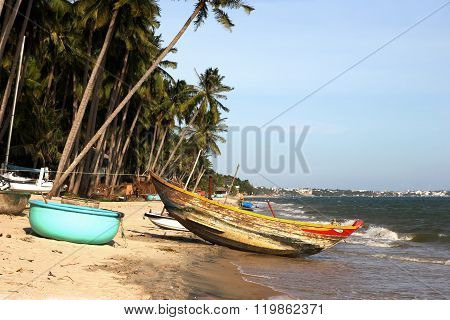 Wooden boats under palm trees on tropical beach