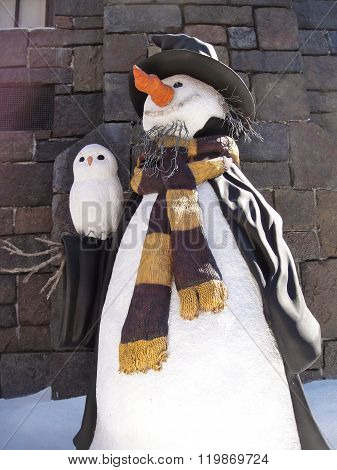 snowman and his owl