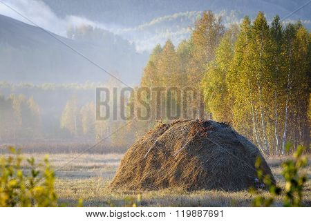 The Haystack In The Autumn Forest.