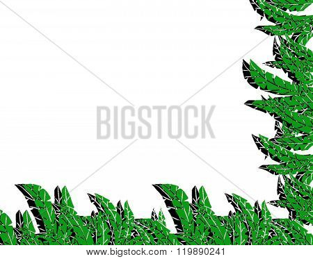 tropical jungle frame with fern and leaves.