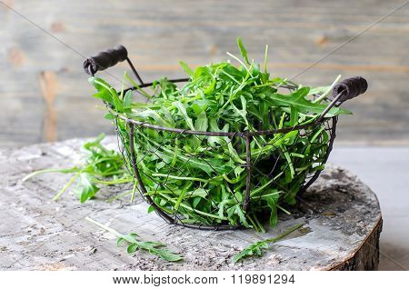 Ruccola/arugula For Fresh Green Salad