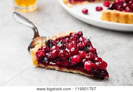 Tart, pie, cake with jellied fresh cranberries, bilberries and winter spices on a grey stone backgro
