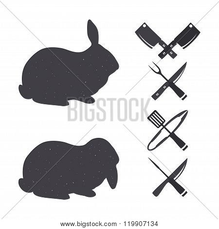 Isolated rabbits on a white backgroud.