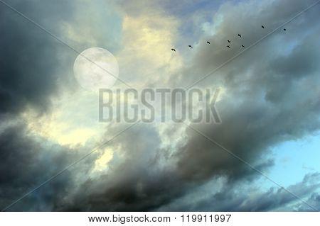 Moon Clouds Birds