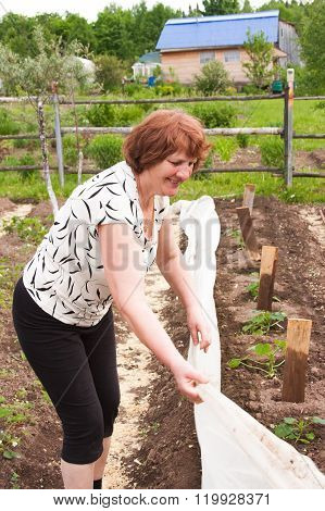 An Elderly Woman Works In A Garden