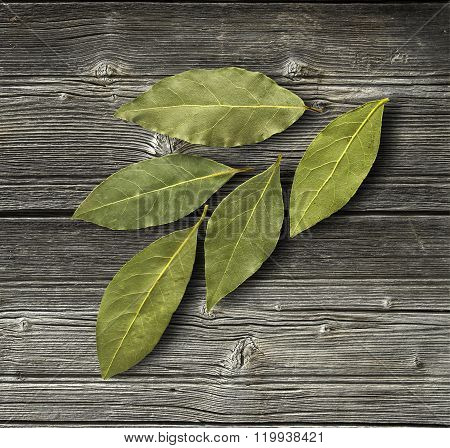 Dry bay leaf on the wooden rustic background top view. Bay leaf background. Daylight.