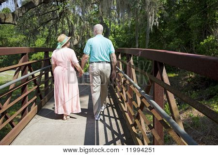 Senior couple holding hands and strolling through a tropical park.