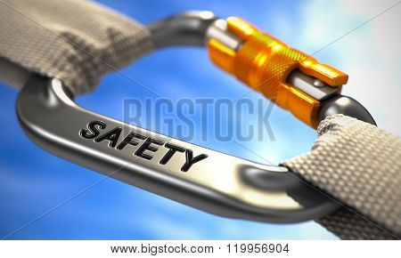 Chrome Carabiner Hook with Text Safety.