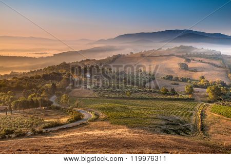 Tuscan Country Scene