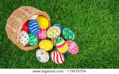 Basket of easter eggs  on Fresh Green Grass