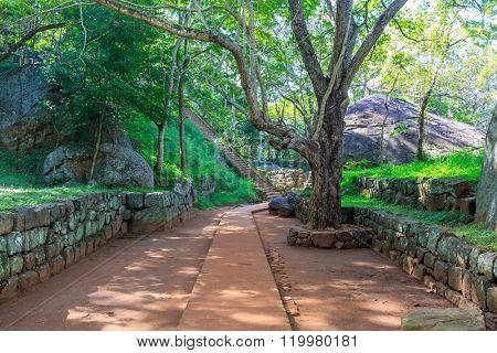 Alley among old ruins of Sigiriya Castle in Sri Lnaka
