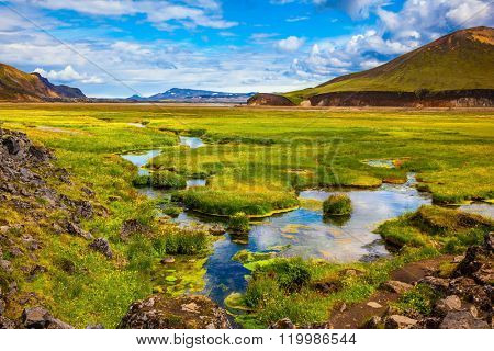 The picturesque valley in Landmannalaugar national park. Summer in Iceland. Green grass among the thermal springs