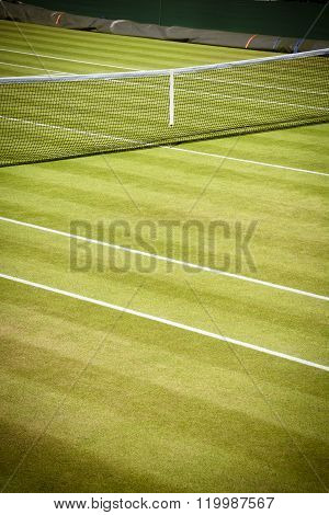 Professional tennis court in sunshine on summer day