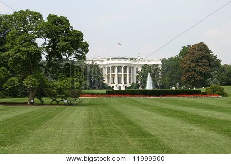 The White House, Rear